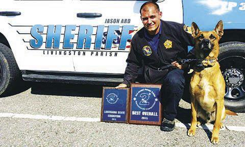 Retired Sheriff's Office K9, Mack, dies - The Livingston Parish News (press release) (blog) 1