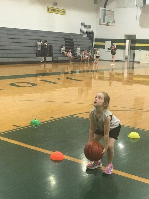 FSHS basketball clinic