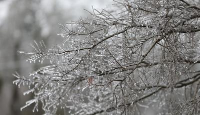 Ice Storm 2021