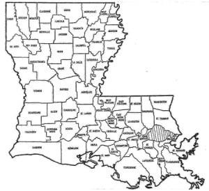 Jeff David: Louisiana's electoral map, fall of 2010