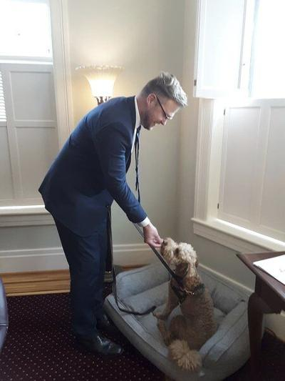 Grief therapy dog introducedat local funeral home