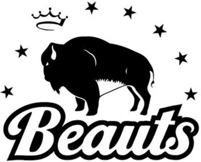 NWHL reaches agreement to use Beauts' trademarks