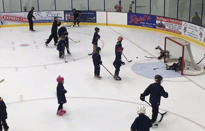 Local summer hockey, instructional skating programs taking a hit