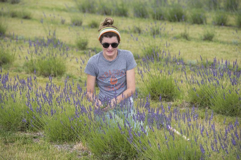 Plan your weekend around lavender