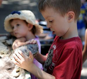 Fun time for all at zoo's 60th birthday