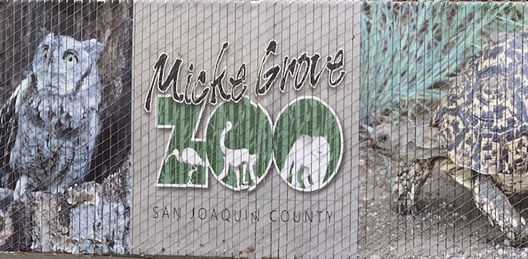 Julie Damron: Micke Grove Zoo receiving an infusion of energy from Leadership Stockton