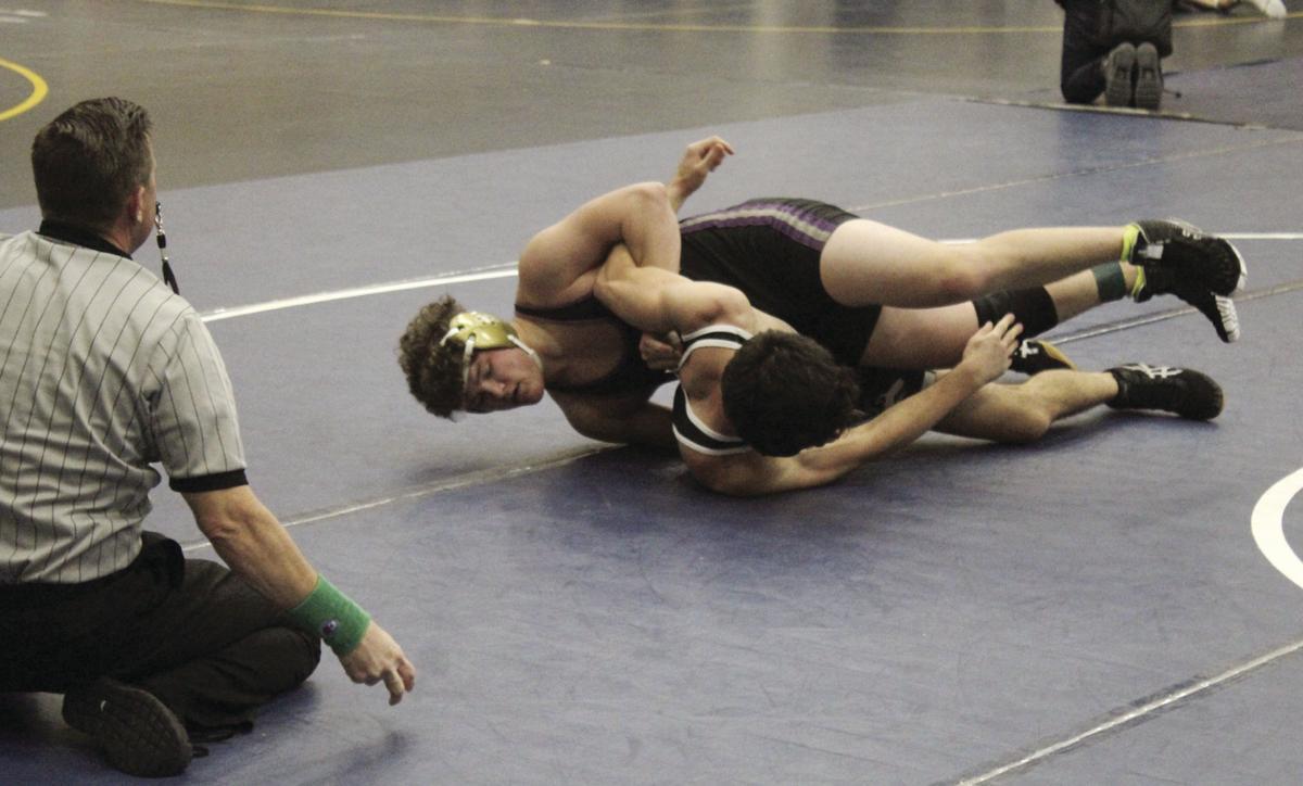 High school wrestling: Perfect 10 for Tokay, Lodi at D-II boys