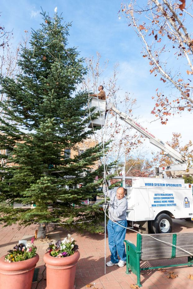 Lodi lights up Downtown Christmas tree