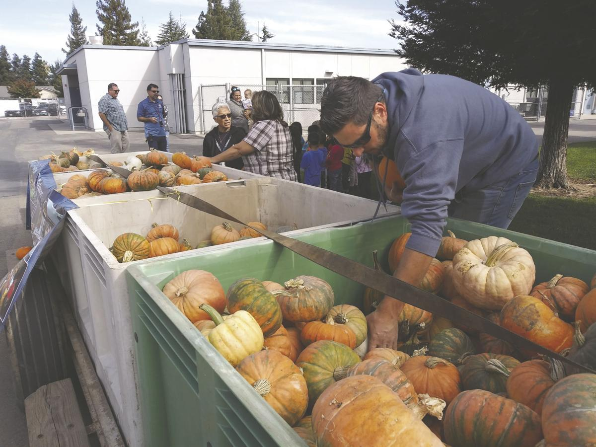 Pumpkins given to kids in memory of worker