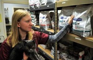 Lodi High School student Lauren Uniack volunteers at veterinary hospital