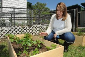 Nonprofit lends green thumb to Lodi students' vegetable garden