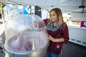 Spend a splendid Sunday at the Lodi Street Faire