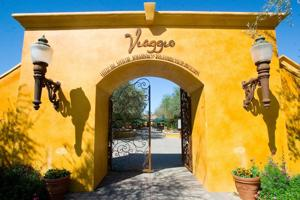 San Joaquin County planners to hear expansion requests from Viaggio and Heritage Oaks wineries