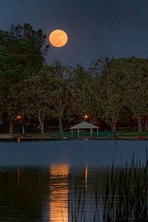 See the stars and planets up close at Lodi Lake