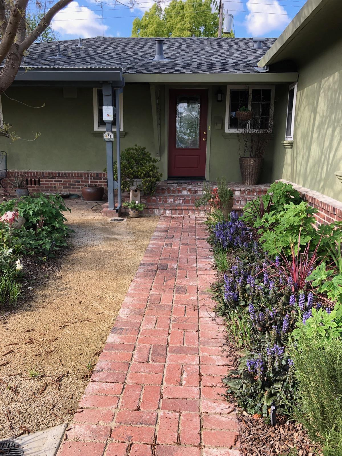 Lodi residents lead trend to replace lawns with native plants