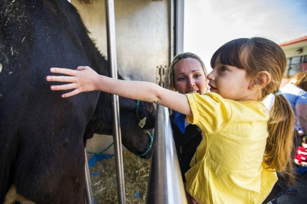 Mobile Dairy Classroom visits Lodi Montessori preschool