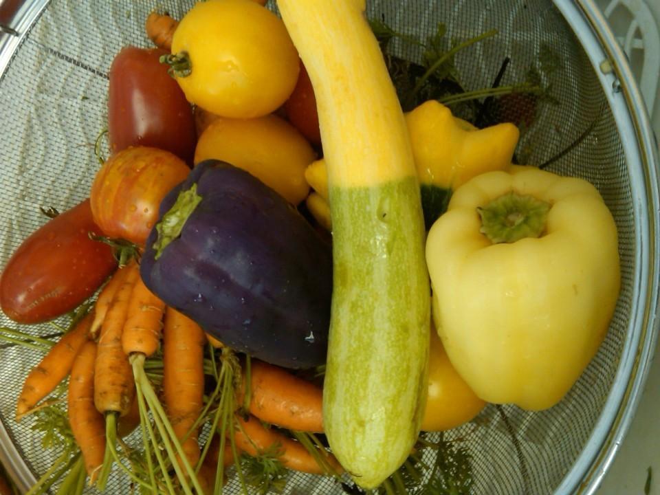 Colorful Veggies