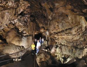 Head out to Lake Shasta Caverns for an adventure into an underground paradise