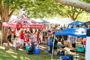 Craft Beer Festival returns to Lodi Lake