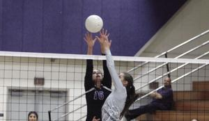 High school volleyball: Hawks soar past Tigers