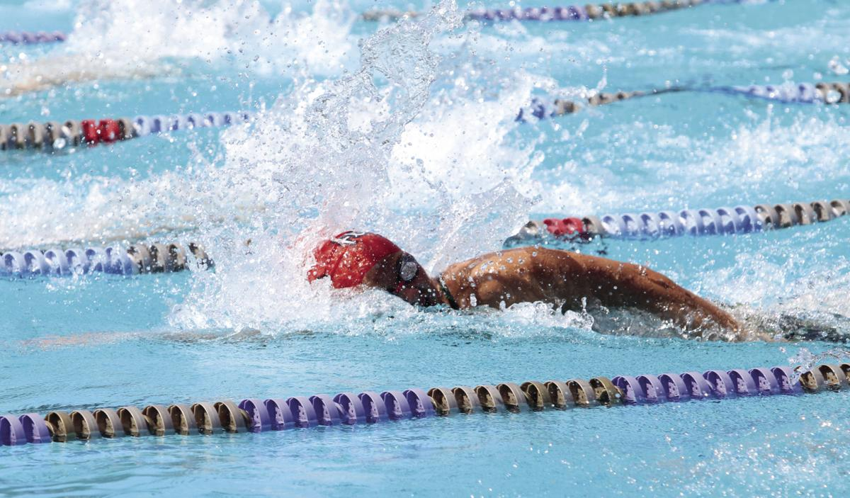 SJS swimming championships: Lodi's Woznick wins two titles