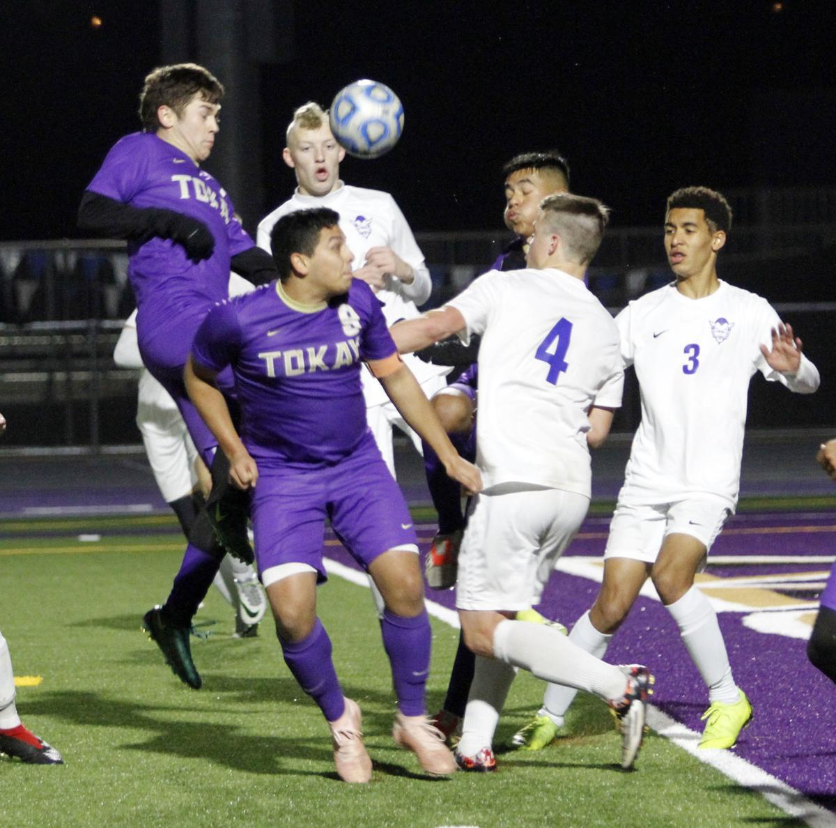 All-TCAL teams: Tokay soccer takes top honors