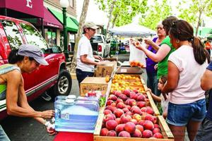 SNAP into fresh produce at Downtown Lodi Farmers Market with EBT cards