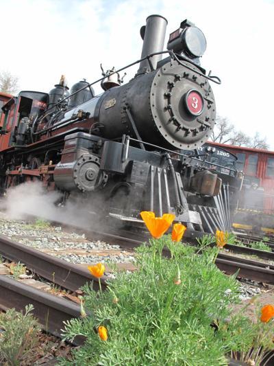 Celebrate spring aboard Railtown 1897's Wildflower Train