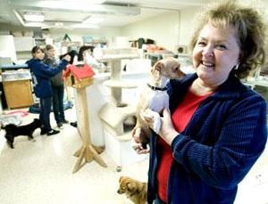 Animal Friends Connection founder explains pet adoption