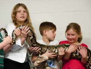 Slithering around with reptiles at World of Wonders Science Museum