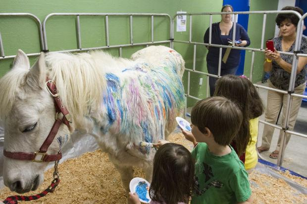 World of Wonders Science Museum hosts Hippology