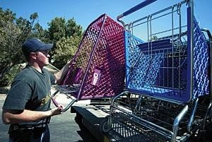 Council OKs introduction of shopping cart rules