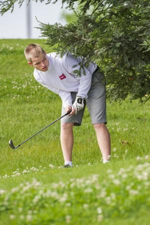 Lodi, Tokay golfers playoff-bound