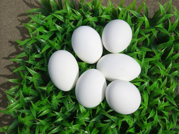 Follow these quick tips for easy, no-fuss hard-boiled eggs