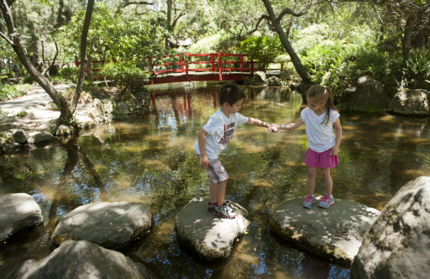 Micke Grove Regional Park: A special place of discovery