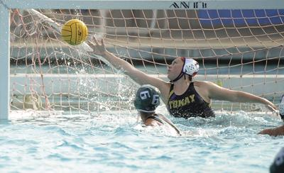 Water polo Division II championship: Tigers fall in title game