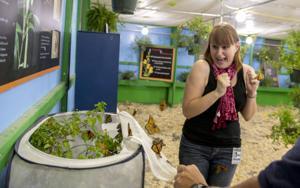 News-Sentinel reporter faces her greatest fear at Lodi Grape Festival exhibit