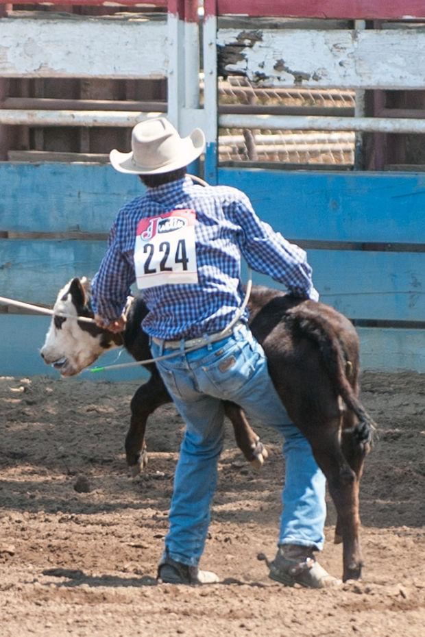 Youth cowboys, cowgirls work hard at Clements Junior Stampede