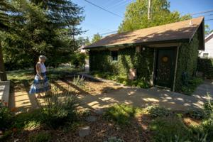 View a variety of flowers and landcapes at the Master Gardeners annual garden tour