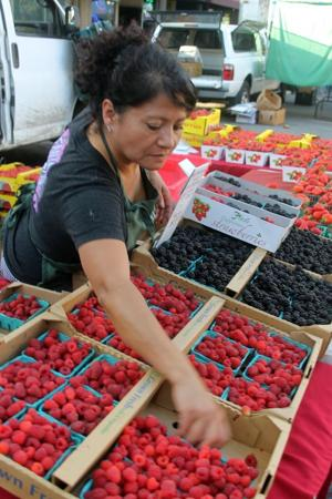 Downtown Lodi Farmers Market says farewell for the year