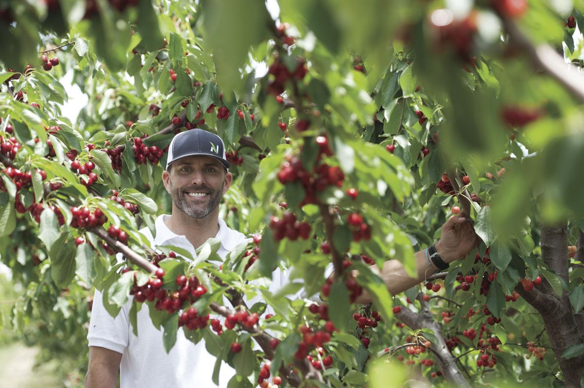 Opening Friday, Lodi Blooms lets you pick your own cherries
