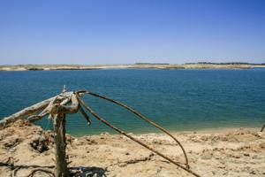 Drought reveals long-submerged world at Lake Camanche