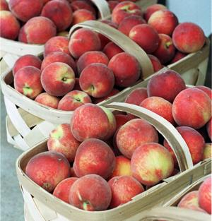 Locally grown peaches liven drinks and are a healthy snack
