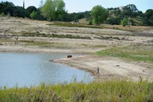 Woodbridge Irrigation District water cut as reservoirs dwindle
