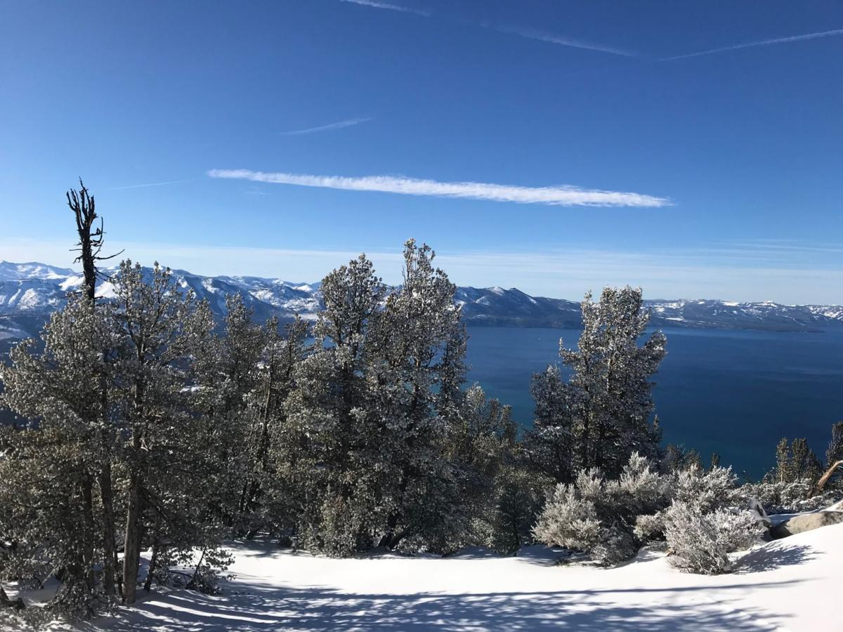 Want snow? Head to Bear Valley, Tahoe for plenty of chilly fun
