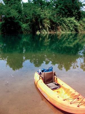 Paddle Fever: A guide to kayaking in and around Lodi