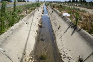 Lodi-area growers oppose California groundwater reform