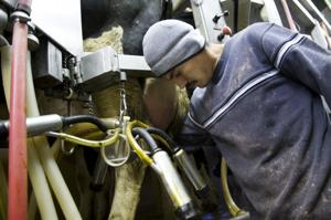 Coming months are uncertain for dairy industry