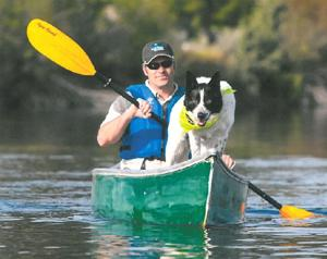 Dogs might help rouse birds from Lodi Lake
