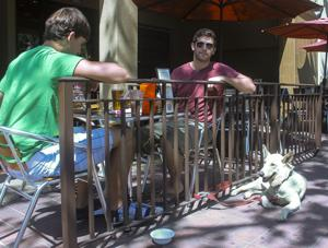 Changes to law mean Lodi restaurant patios may soon allow dogs